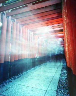 Torii gate spirits